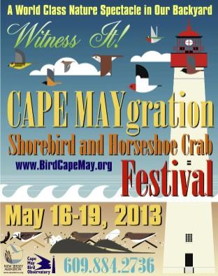 Cape Maygration poster