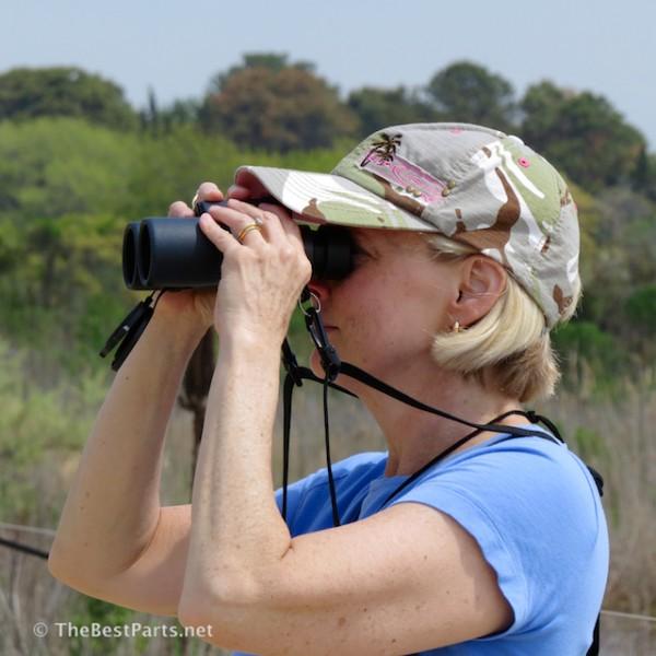 Gail observing