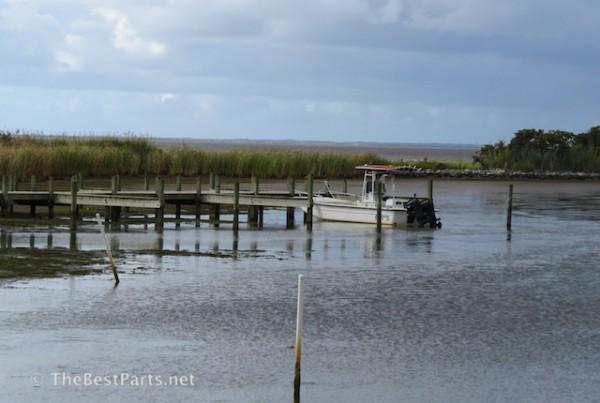 estuary2