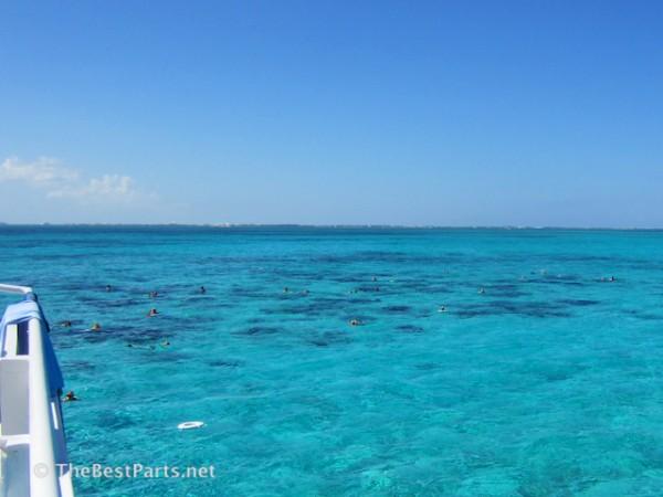 Grand Cayman barrier reef snorkeling
