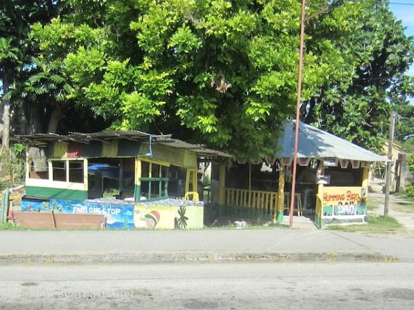 Jamaica Humming Bird Bar